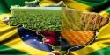 A saída para o Brasil que o 'preconceito' não permite enxergar