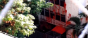 VÍDEO: Vândalos petistas atacam prédio de Cármen Lúcia