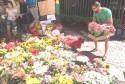 O Show de flores da população que sensibilizou a ministra Cármen Lúcia