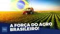 Desvendamos porque o agronegócio brasileiro mete medo na concorrência internacional (veja o vídeo)