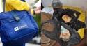 PF nas ruas: Deflagrada operação para combater roubos e fraudes de funcionários dos Correios