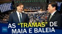 Vale tudo em Brasília? As articulações de Rodrigo Maia para eleger Baleia Rossi (veja o vídeo)