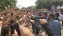 """AO VIVO: No RN, na """"cara"""" da petista Fátima Bezerra, Bolsonaro é aclamado pelo povo (veja o vídeo)"""