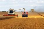 Agronegócios: Algumas previsões para 2016
