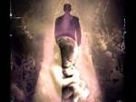Aberrações biológicas diante dos engenhos da reencarnação