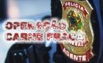 As falsas acusações de 'generalização' no escândalo da carne podre – Reinaldo Azevedo não leu Raymundo Faoro