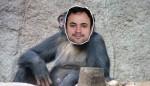 O despudorado psolista Glauber Braga e a cultura do macaco de Floripa