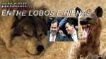 Brasil... entre lobos e hienas