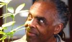 O ministro da cultura e a apologia às drogas na era petista (veja o vídeo)
