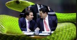 O ninho das serpentes e o complô para subjugar o governo Bolsonaro