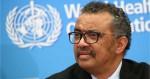 """A famigerada """"DesOrganização Mundial da Saúde"""": Quantas vidas foram perdidas devido a tanta desinformação? (veja o vídeo)"""