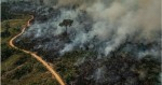 O que a TV não mostra: A diferença entre incêndios e queimadas e o sensacionalismo jornalístico (veja o vídeo)