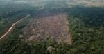 Governo cala a esquerda e comemora menor nível de desmatamento na Amazônia, em quatro anos