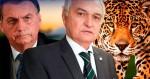 """AO VIVO: General diz que é """"chegado o momento da decisão""""/ O plano por trás da CPI (veja o vídeo)"""