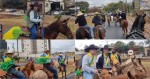 Cidade paulista reúne milhares de cavaleiros em apoteótica cavalgada pró-Bolsonaro (veja o vídeo)