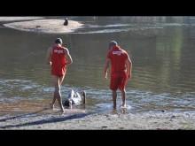 Domingos Montagner, o último mergulho