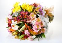 Que saibam Jacob Barata, Gilmar & Guiomar que a neta brasileira de Oscar Wilde também recebeu flores