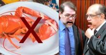 Governo proíbe a pesca de lagosta e camarões no Nordeste