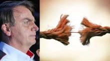 A corda esticou: O posicionamento de Jair Bolsonaro após os reiterados atos de violação da Constituição