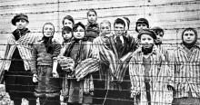 Medidas de redução populacional: Um holocausto a olhos vistos