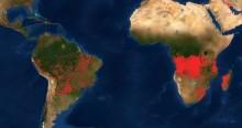 """Imagem da NASA demonstra que a Floresta Amazônica não está """"em chamas"""""""