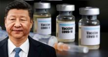 O risco da vacina política