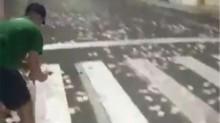 Depois de bandidagem espalhar o terror em SC, quatro pessoas são presas por pegarem dinheiro abandonado (veja o vídeo)