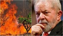 Governo Lula foi recordista em focos de incêndio