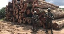 Em defesa da Amazônia, militares fazem apreensão de madeira ilegal no Pará