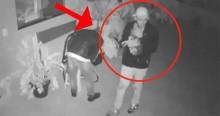 Bandidolatria e fofura: Globo destaca que ladrões fizeram carinho em cachorro enquanto assaltavam