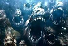 O poder da indecência das piranhas famintas!