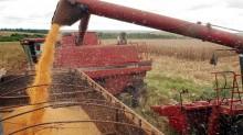 Agronegócio alavanca crescimento da produção industrial e previsão é de safra recorde em 2021