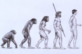 Artigo: A marcha ascendente dos antepassados do homem