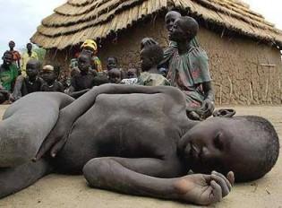 Fome - O flagelo da humanidade
