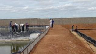 Produção de alimentos, agroenergia e fibras na água