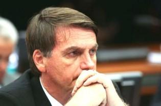 Bolsonaro e a andorinha do verão