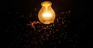 Reflexões sobre a luz e a escuridão...