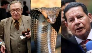 """Olavo quer evitar que militares do governo choquem novo """"ovo de serpente"""" (veja o vídeo)"""