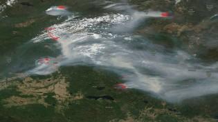 As queimadas na Amazônia Brasileira e a guerra de informações: cuidado, querem te manipular