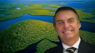 10 lições que aprendemos com a histeria sobre a Amazônia