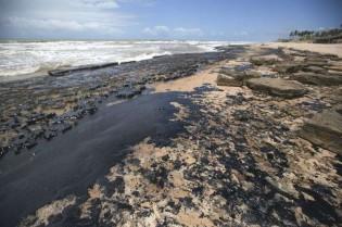 É lógico que o petróleo não foi despejado na Venezuela