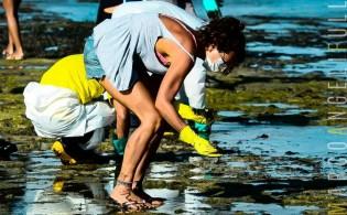 Ecoterrorismo (?): cresce a suspeita de terrorismo no derrame de óleo em águas nordestinas
