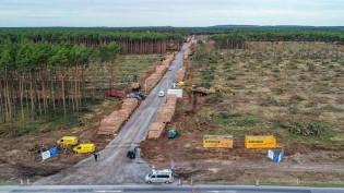 Alemanha derruba floresta