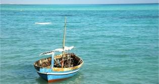 O Coronavírus e o maior dilema da humanidade: De iate, navio ou de bote todos estão à procura de terra firme