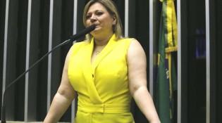 Joice Hasselmann em queda livre e a Lei da Censura