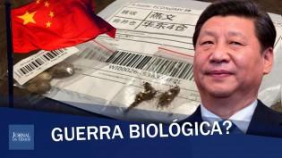 Sementes misteriosas: mais um ataque da China? (veja o vídeo)
