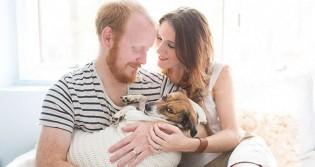 A humanização dos pets como produto da indiferença pelo ser humano