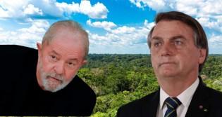 """""""O Lula vendeu a Amazônia e o Bolsonaro não entregou"""", afirma articulista (veja o vídeo)"""