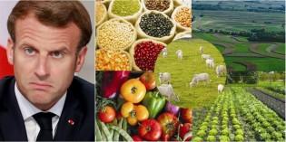 Chora, Macron: Produção agrícola e pecuária do Brasil deve atingir R$ 1 trilhão em 2021