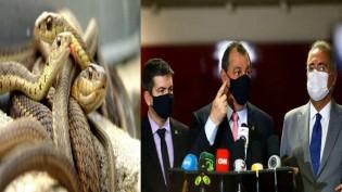 A CPI... um ninho de cobras criadas e o objetivo óbvio